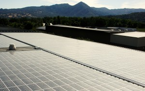 Fetzer Renewable